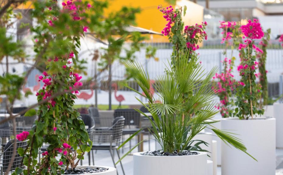 حدائق نورا الرياض