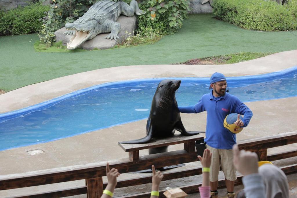 فندق حديقة الحيوانات ابوظبي