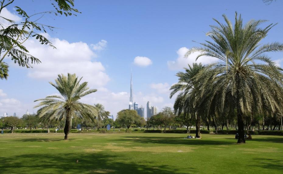 منتزهات دبي